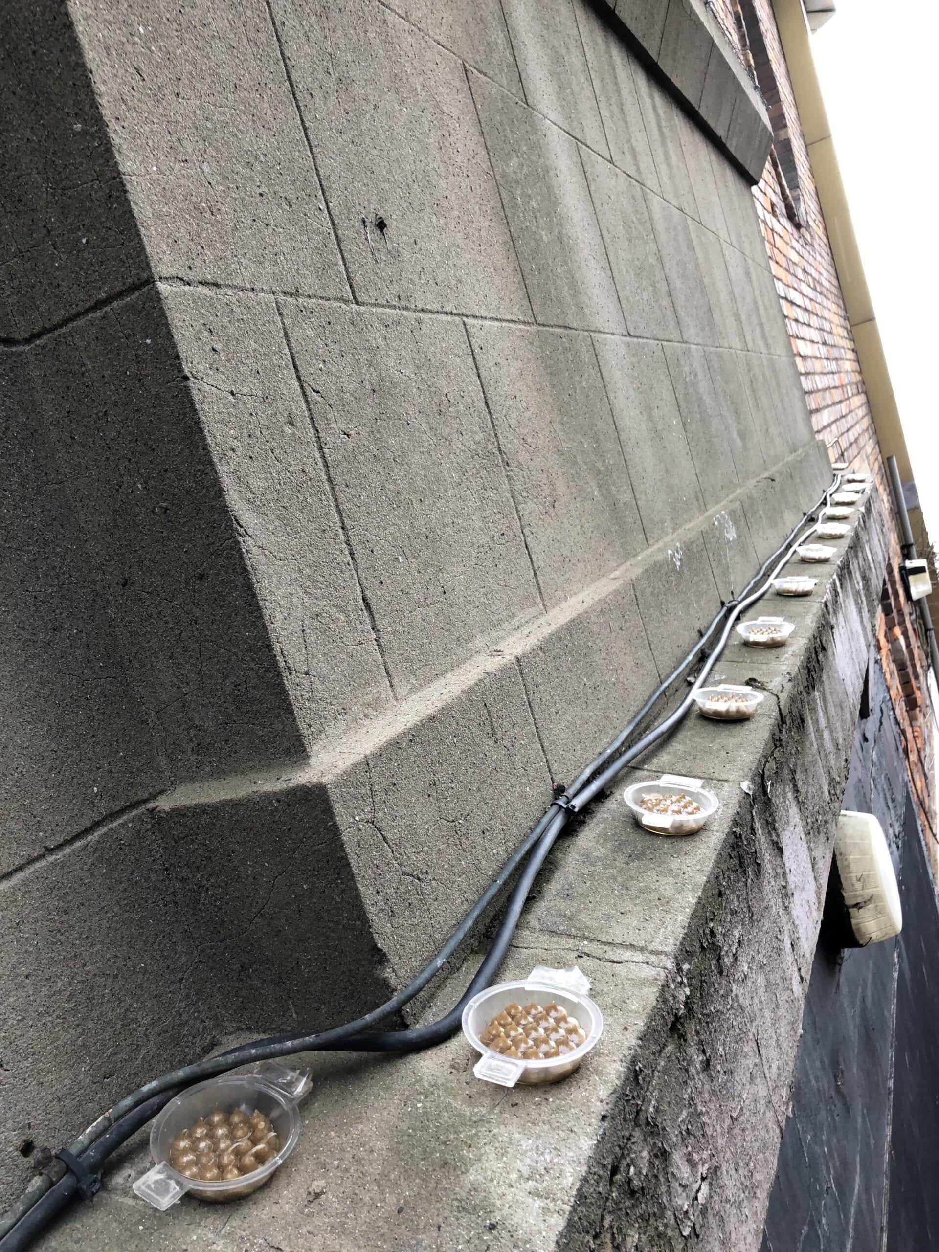 Fire Gel on ledge