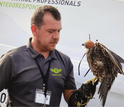 Technician with a falcon