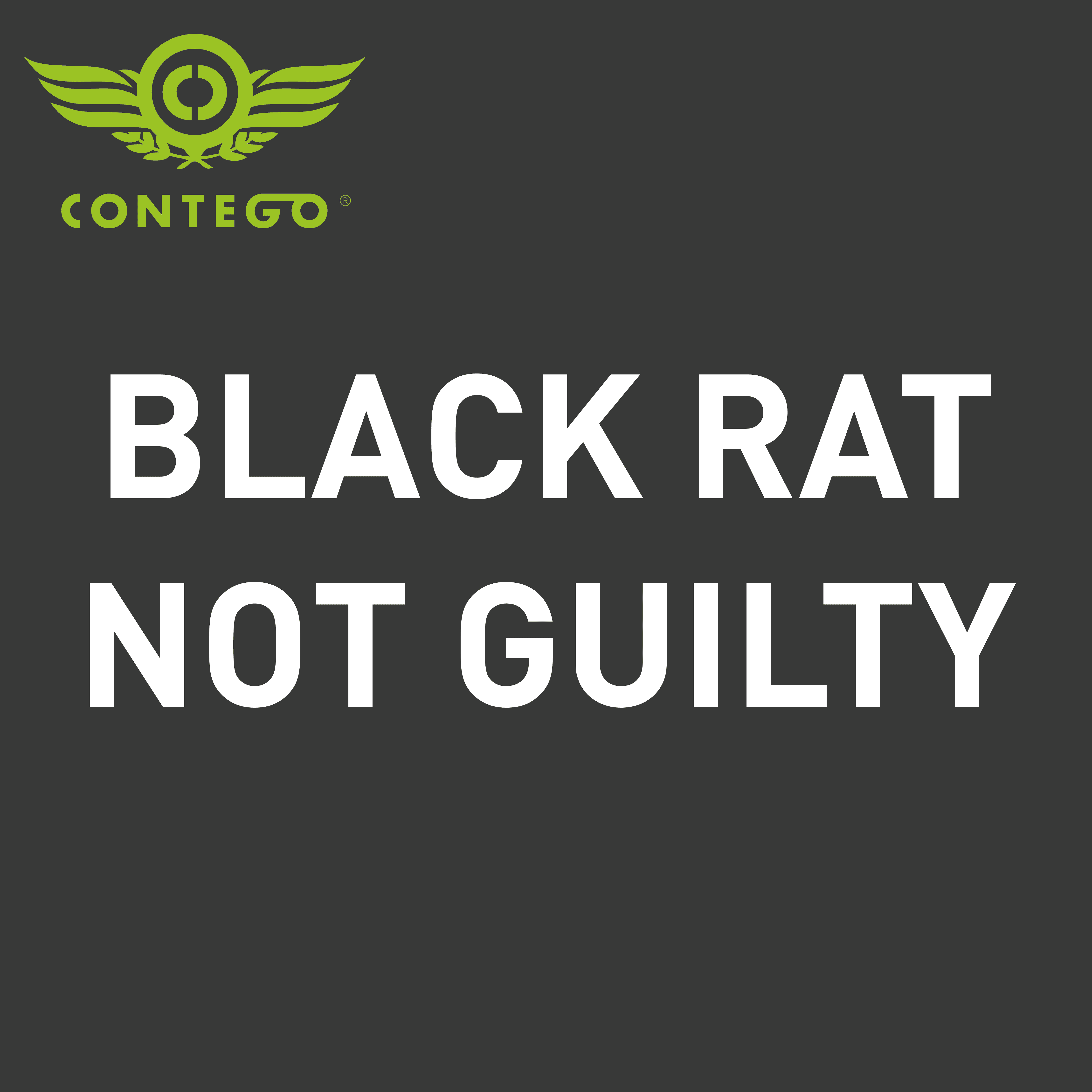 Black rat not guilty