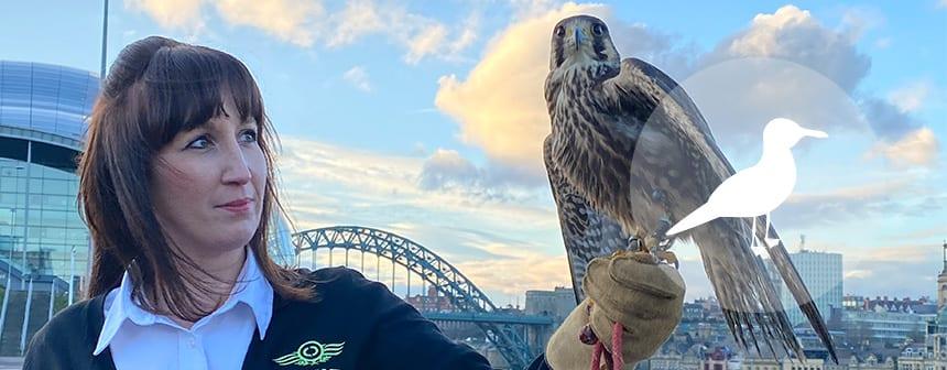 female falconer